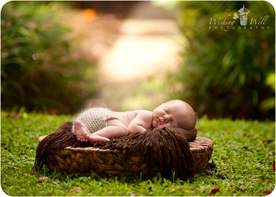 8 days new jacksonville newborn photographer